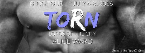 Torn Book Tour